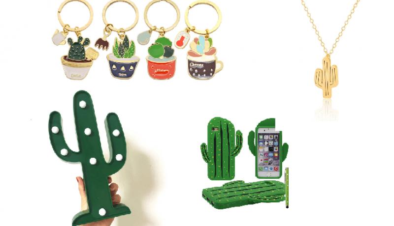 Siete artículos baratos y originales de cactus