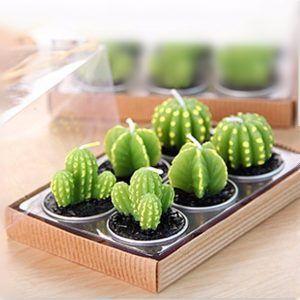 cactus vela